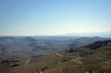 La Morra view of Langhe, Piemonte, tourism